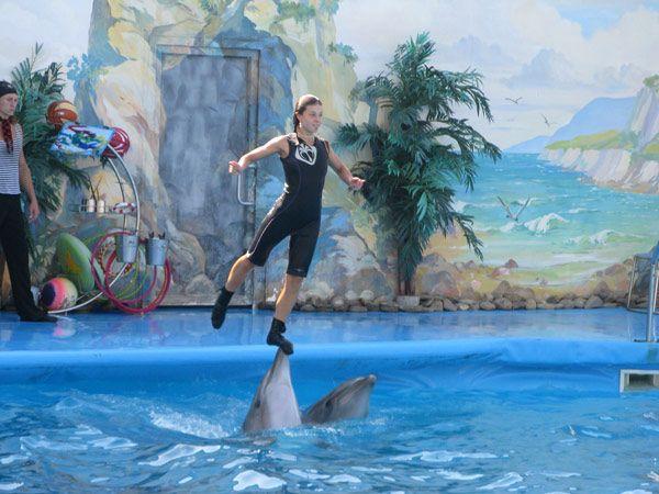 Выступления в дельфинарии Бердянска